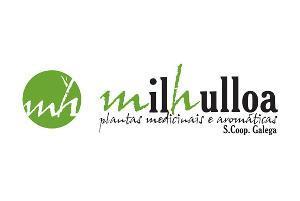 pdv__milhulloa
